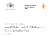Glaucoma risk stratification report cover