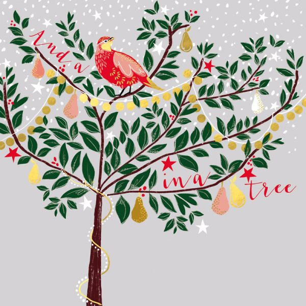 Christmas card front shows birds in a tree on a grey snowy background